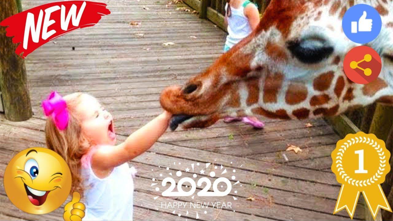 مواقف مضحكة للاطفال مع الحيوانات 2020 اضحك من قلبك اضحك اضحك Animals Giraffe Happy New