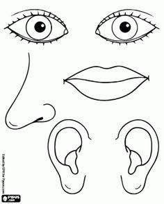 Göz Burun Ağız Boyama Sayfaları Ile Ilgili Görsel Sonucu Fen