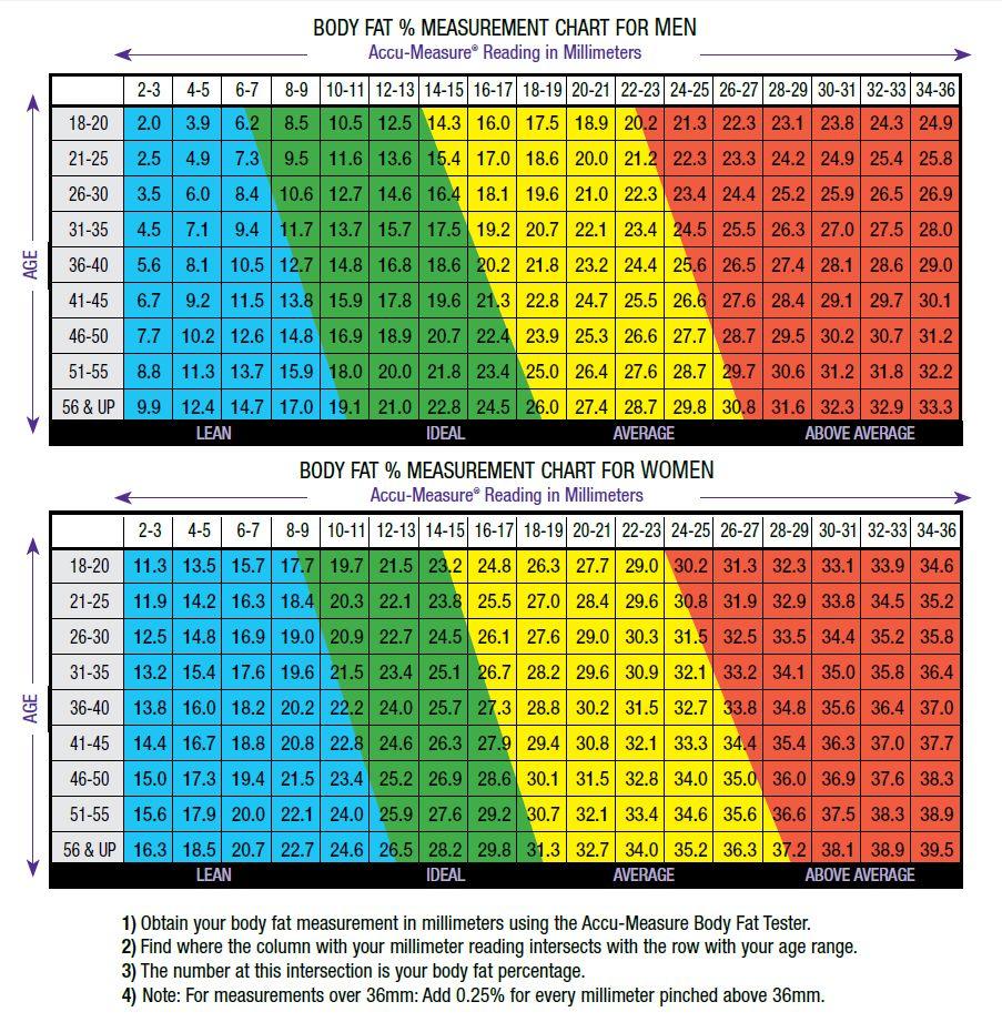 body fat chart
