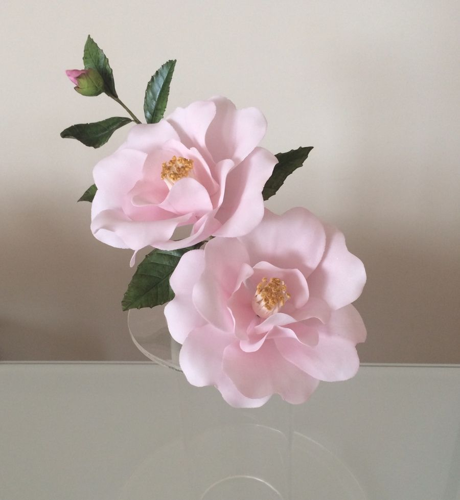 Gumpaste peony with images sugar paste flowers sugar