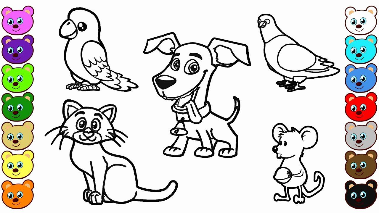 Coloring Book For Kids Animals Luxury Learn Colors For Kids With Home Animals Coloring Pages Giraffe Coloring Pages Deer Coloring Pages Animal Coloring Pages