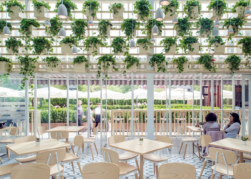 Botanical Brew: Four O Nine converts greenhouse into coffee shop in ...