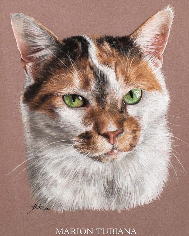 Marion Tubiana Cat art, Animals artwork, Animal art
