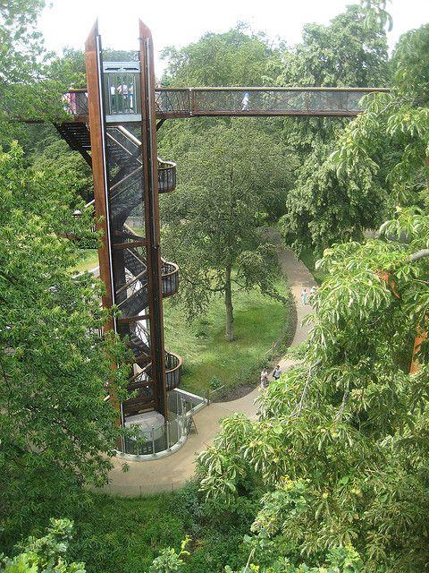 7e394b3945ce76ac64ac0f4ad3f6261e - How High Is The Tree Top Walk At Kew Gardens