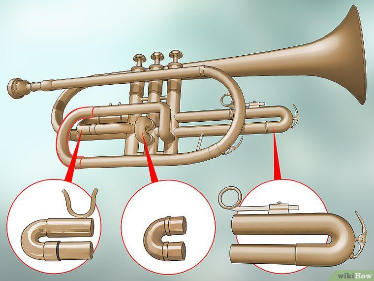 How To Wash A Trumpet With Pictures Trumpet Wash Pictures