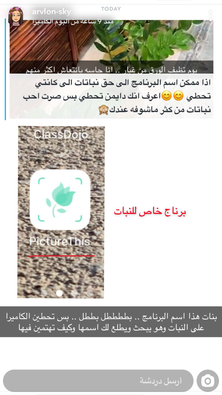 برنامج اسم النبات وكيف نعتني به App Pictures Application Iphone Iphone App Layout