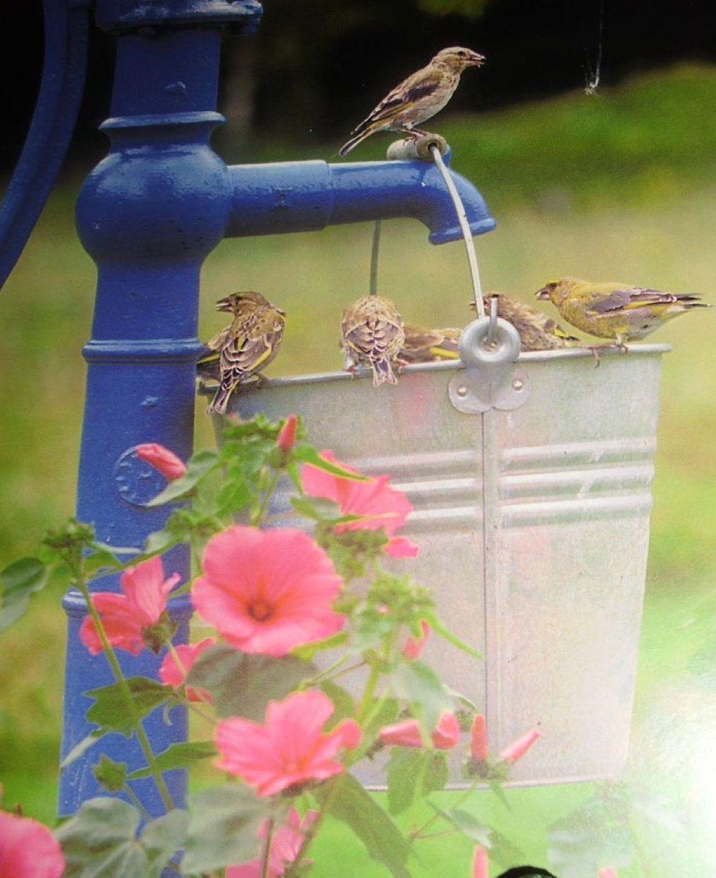 7rooof Bird Houses Bird Feeders Bird