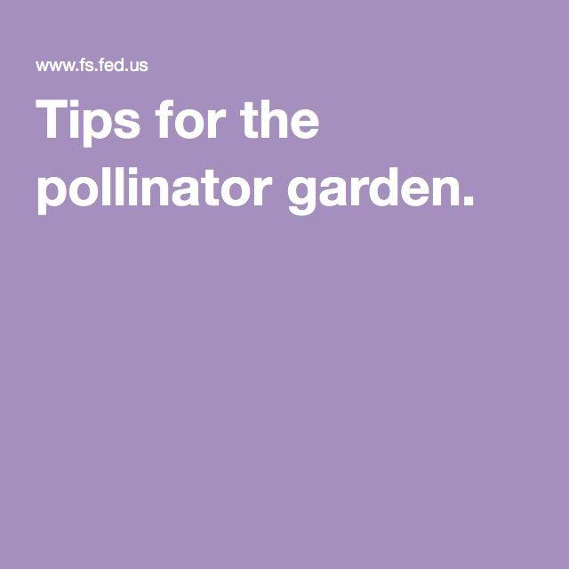 Tips for the pollinator garden.