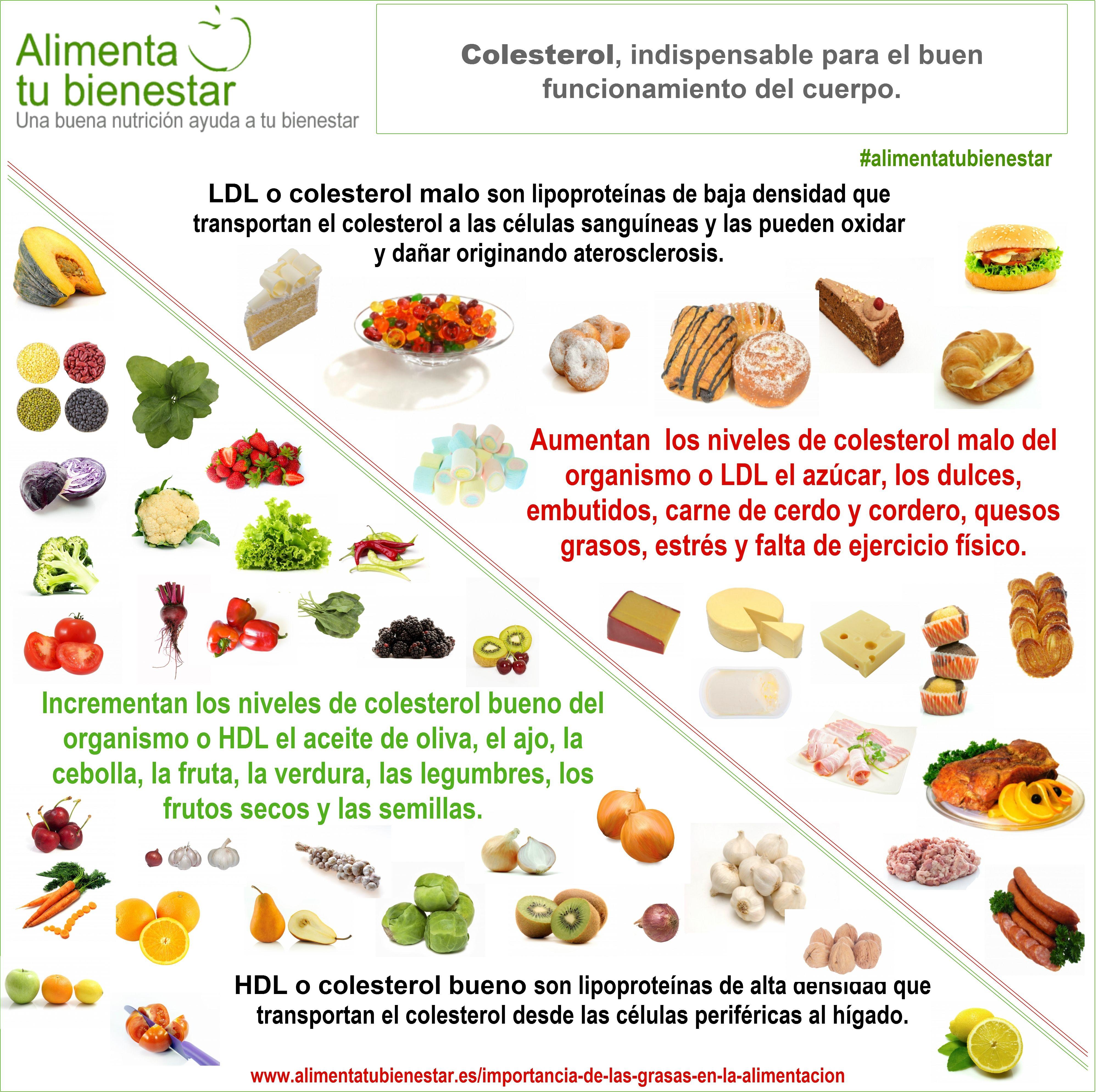 La importancia de las grasas en la alimentación | High