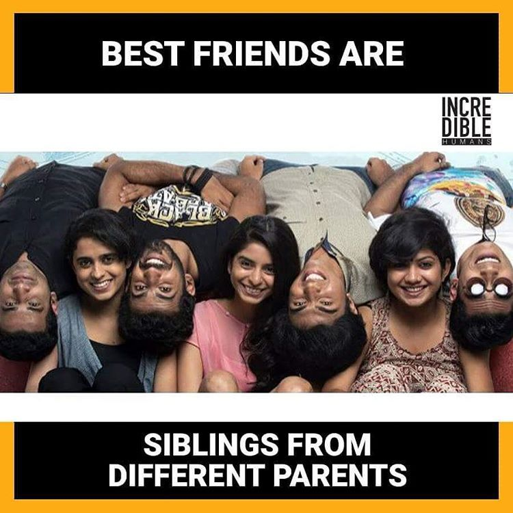 Yeah Incrediblehumans Tag Best Friendship Quotes Best Friend Quotes Friendship Humor