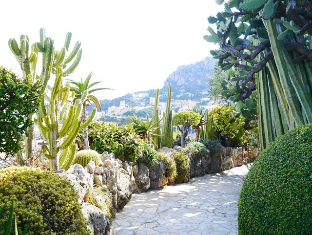 Pin On Gardens Jardin Exotique Monte Carlo
