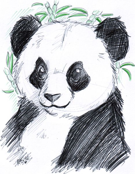 Keyshakitty On Deviantart Panda Drawing Panda Art Cute Panda