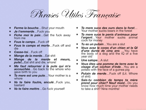 Funny French Phrases * because I'm learning French and
