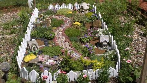 Fairy Gardens In Ground Miniature From The Great Annual Garden