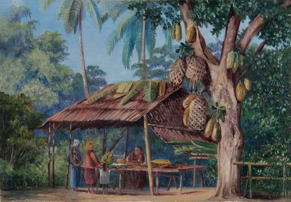 Jack Fruit Tree Shop, Malang, Java Marianne North (1830