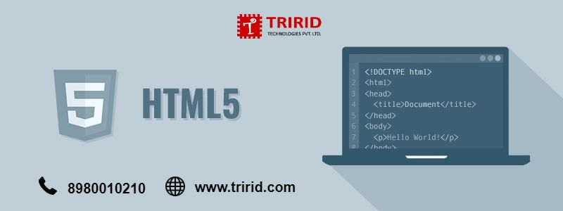 How can move text in HTML? tririd com | tririd | Text animation