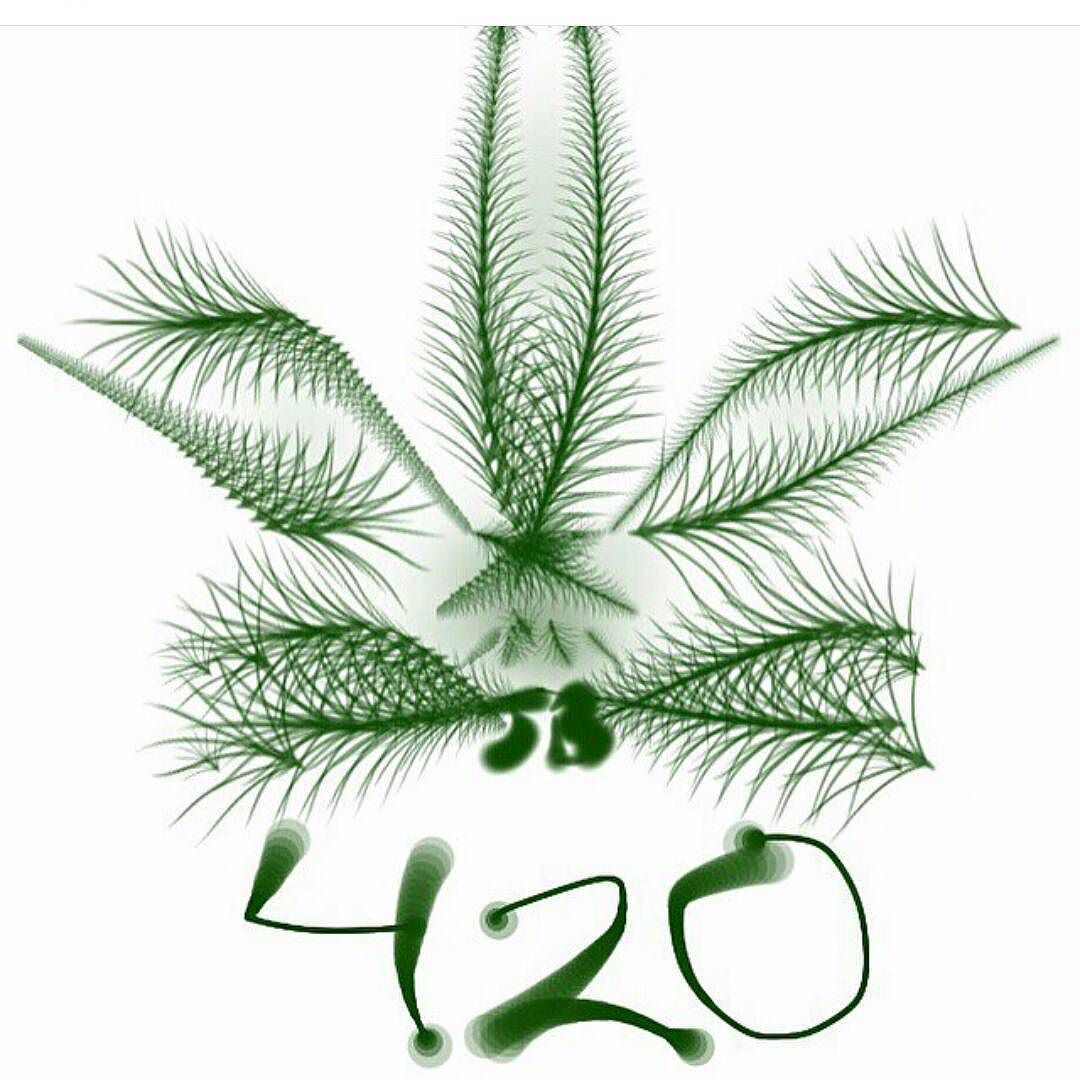 420 #weedporn #jamaica #habano #porro #verde #marley #marihuana ...