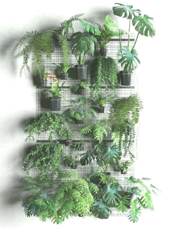 62 Parete per piante da interno per interni semplice e ...