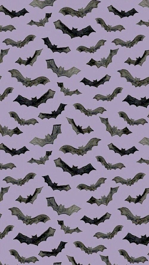 Halloween Background And Bats Image Cute Fall Wallpaper Halloween Wallpaper Halloween Wallpaper Iphone