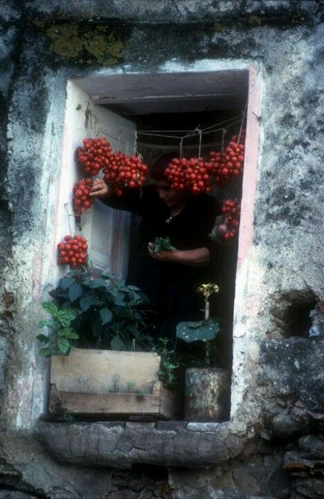 Burt Glinn, Italy