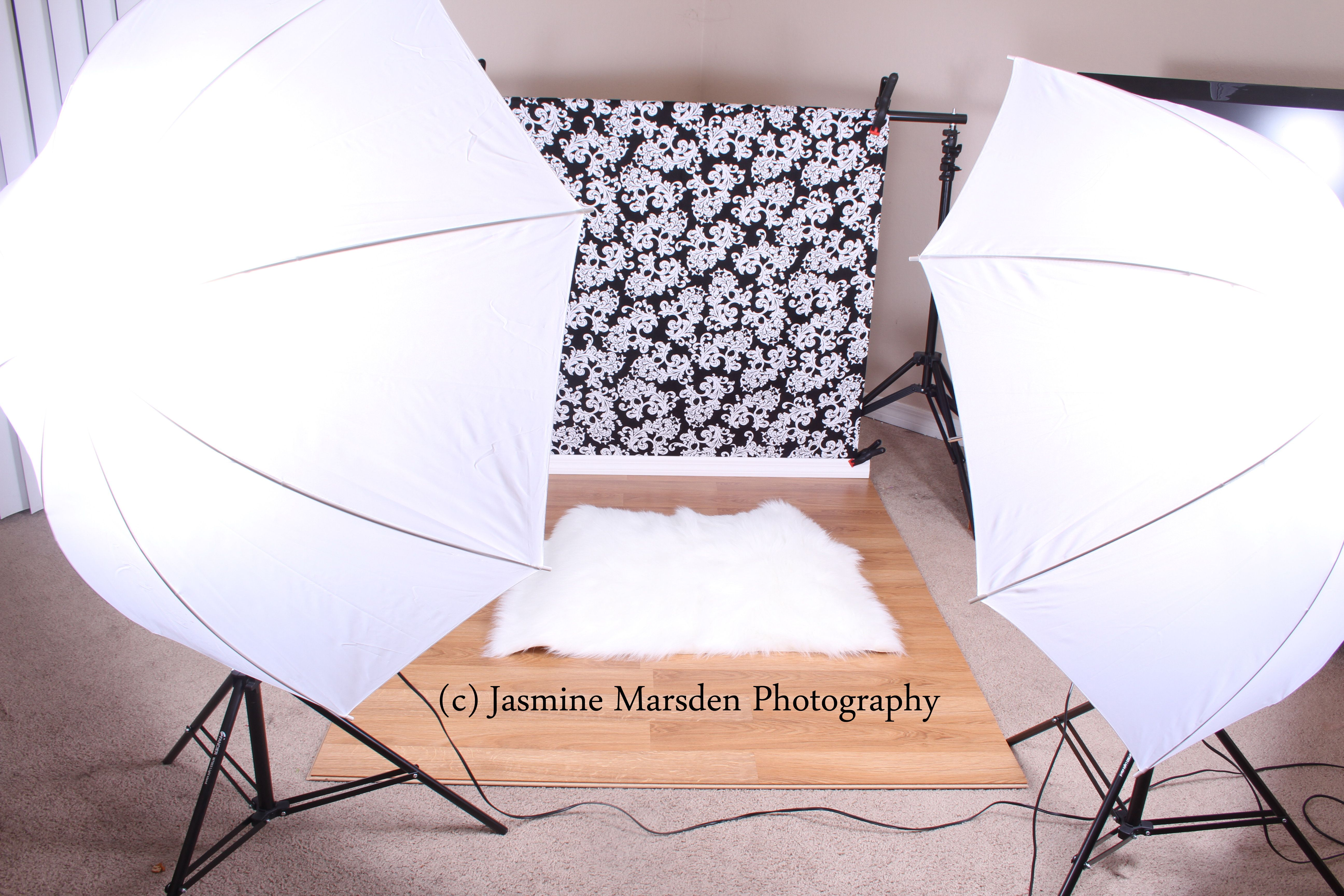 damask background. tips and tricks for photography. light kit backdrop. damask backdrop. & damask background. tips and tricks for photography. light kit ... azcodes.com