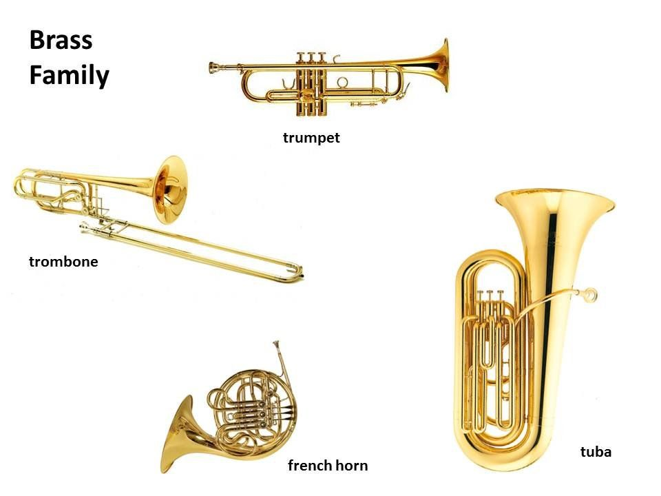Explore this interactive image Instruments Brass Family