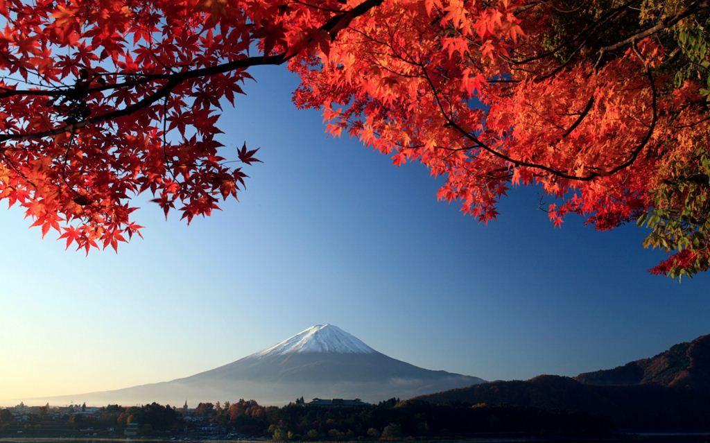 Nature Mount Fuji Autumn Maple Japan Http Www Inihdwallpaper
