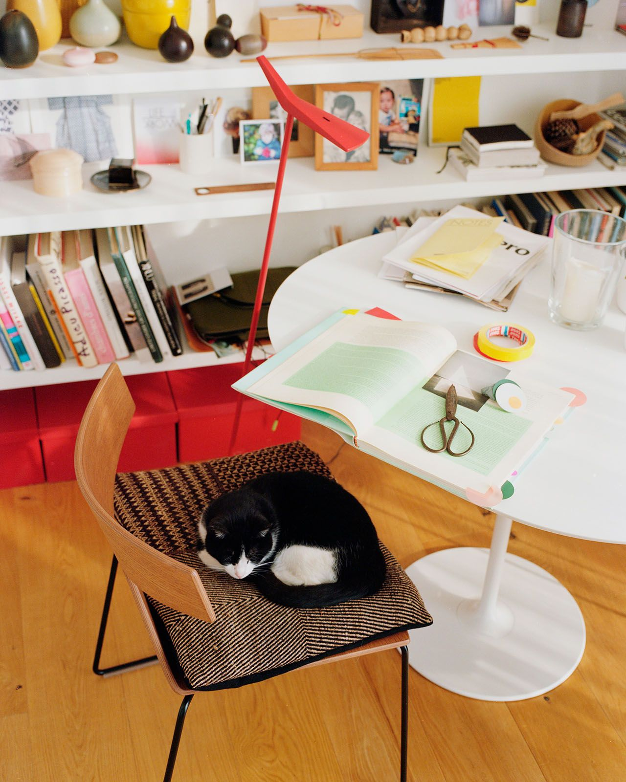 Saya chair with cat