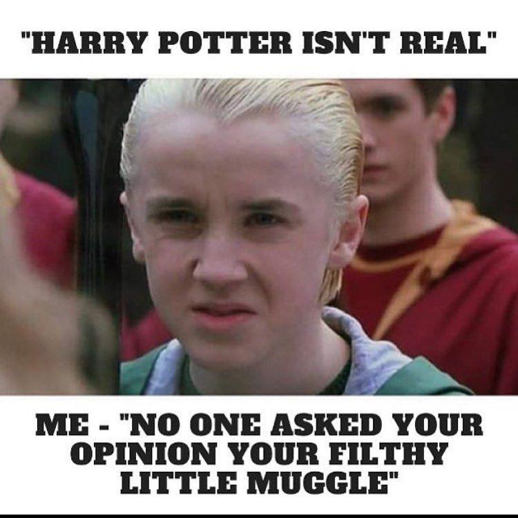 Tag A Muggle To Confuse Them Follow Harrypotterworld10 Harrypotterworld10 Credit Harry Potter Jokes Harry Potter Memes Hilarious Harry Potter Love