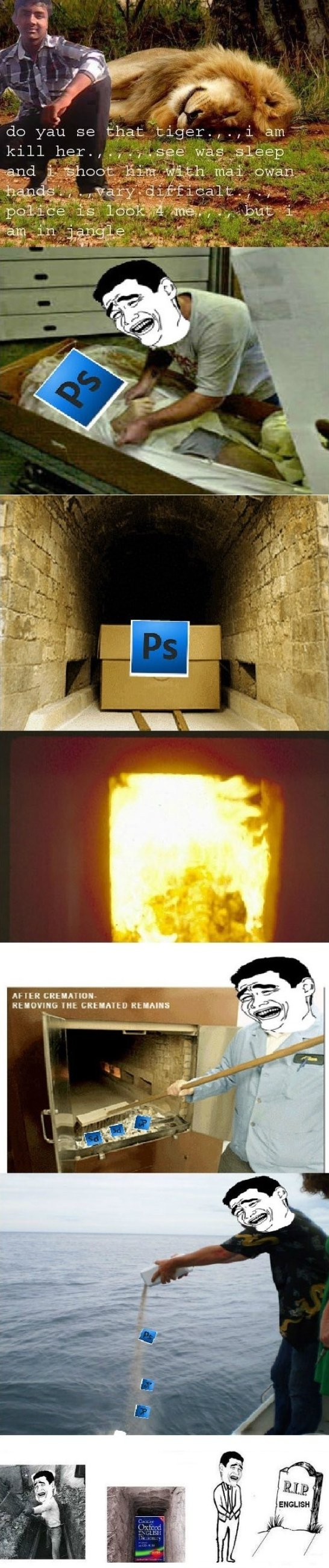 Rip photoshop and grammar meme lol funny gifs rip photoshop and grammar meme lol thecheapjerseys Images