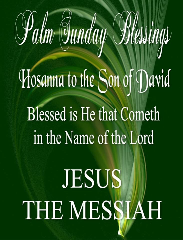 Palm Sunday Blessings! (With images) Palm sunday quotes