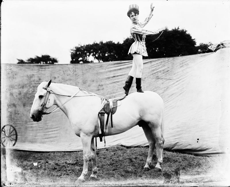 Frederick Whitman Glasier. Equestrienne on horseback, ca. 1903. Photograph. Collection of the John and Mable Ringling Museum of Art Archives, Glasier Glass Plate Negative Collection, 0063.