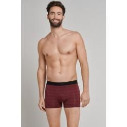 Photo of Shorts dark red streaked – Personal Fit 4Schiesser.com