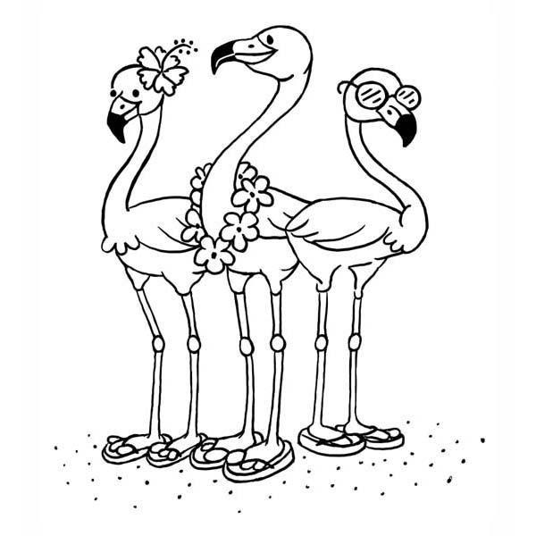 Flamingos In Flip Flops Rubber Stamp Sku G372 Flamingo Coloring Page Animal Coloring Pages Coloring Pages