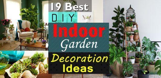 best diy indoor garden decoration ideas also vegetable gardening rh pinterest