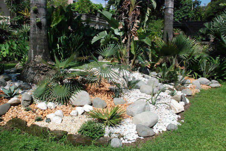 Jardin de rocaille avec des grosses pierres d coratives et for Plantes decoratives exterieur