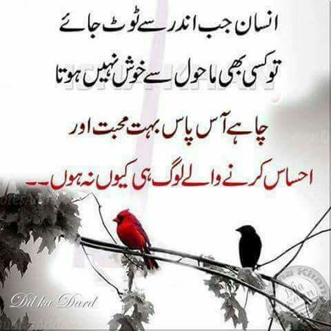 Pin By Sk Sofiya On Achi Baatein Pinterest Quotes Urdu Quotes