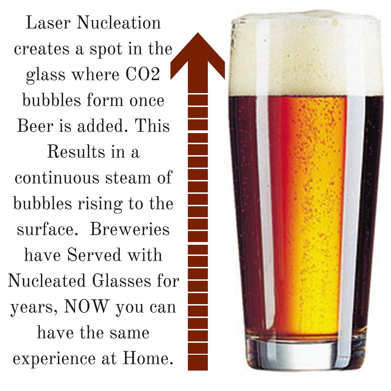 Amazon Com Taylor D Milestones Beer Glasses 16 Oz Set Of 4 Nucleated Pint Glass With Heavy Bottom Traditionally Crafted Crystal Glass Beer Beer Glasses