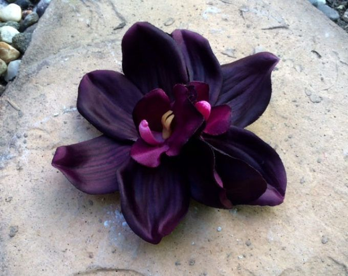 Eggplant double orchid tropical silk flower hair clip