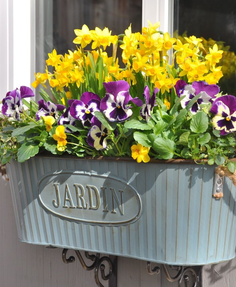 Window box ideas without flowers  your windowsill is about to look so pretty  gardens planters and