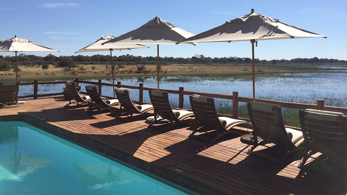 The pool at Sanctuary Retreats\u0027 Chief\u0027s Camp in Botswana Photo