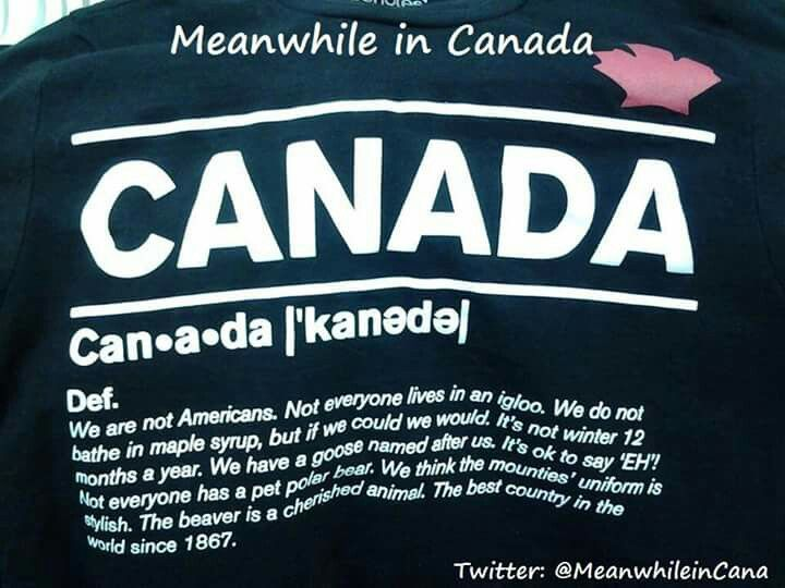Pin By Suzie Mac Kenzie On Funnies Quotes Meanwhile In Canada Canada Funny Canada Jokes