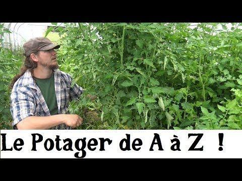 Le Potager A A Z 6 La Biodiversite Youtube Permaculture