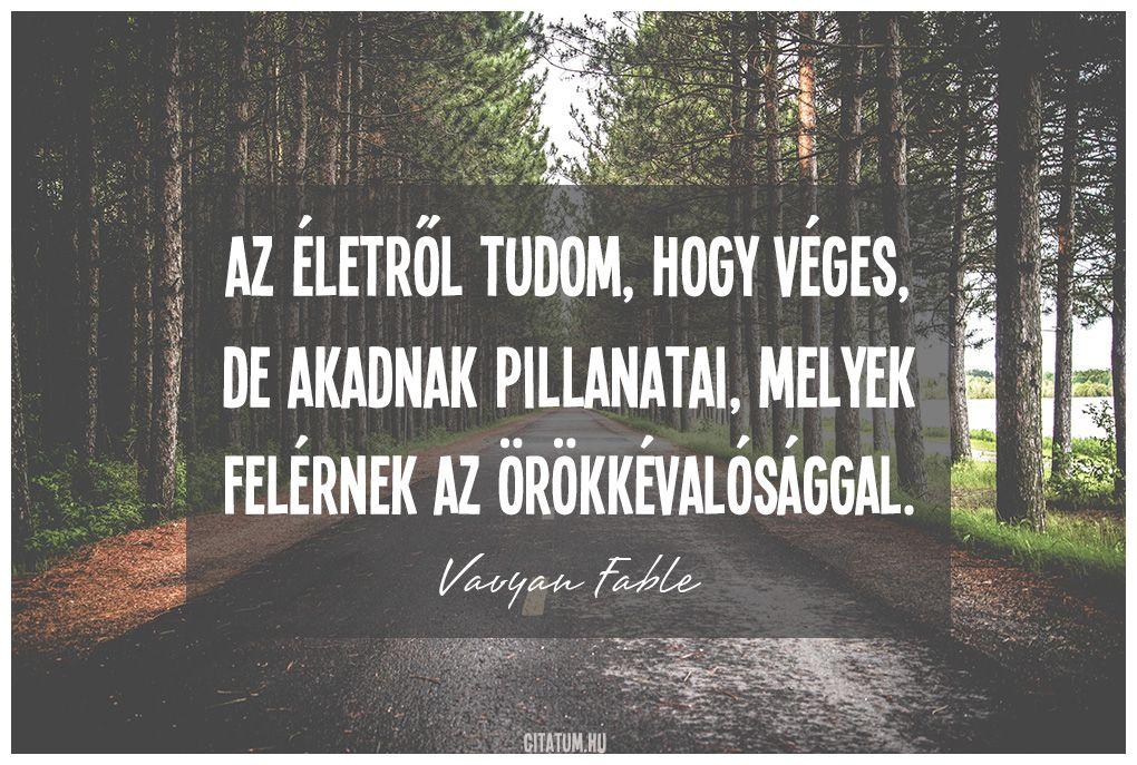 fable idézetek Vavyan Fable idézet az életről. | Quotes, Positive Life | Quotes