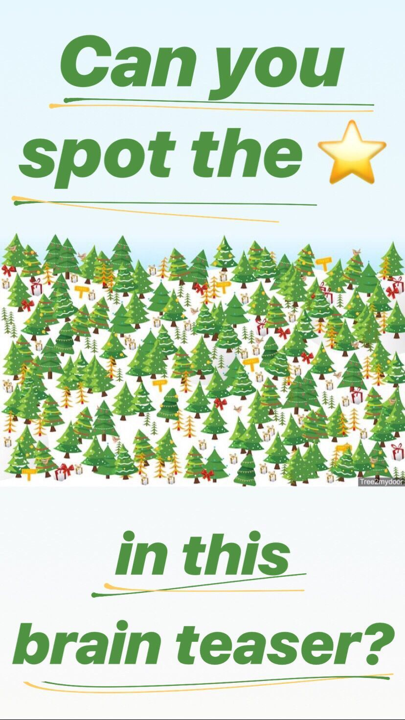There's a star hidden among over 150 Christmas trees in