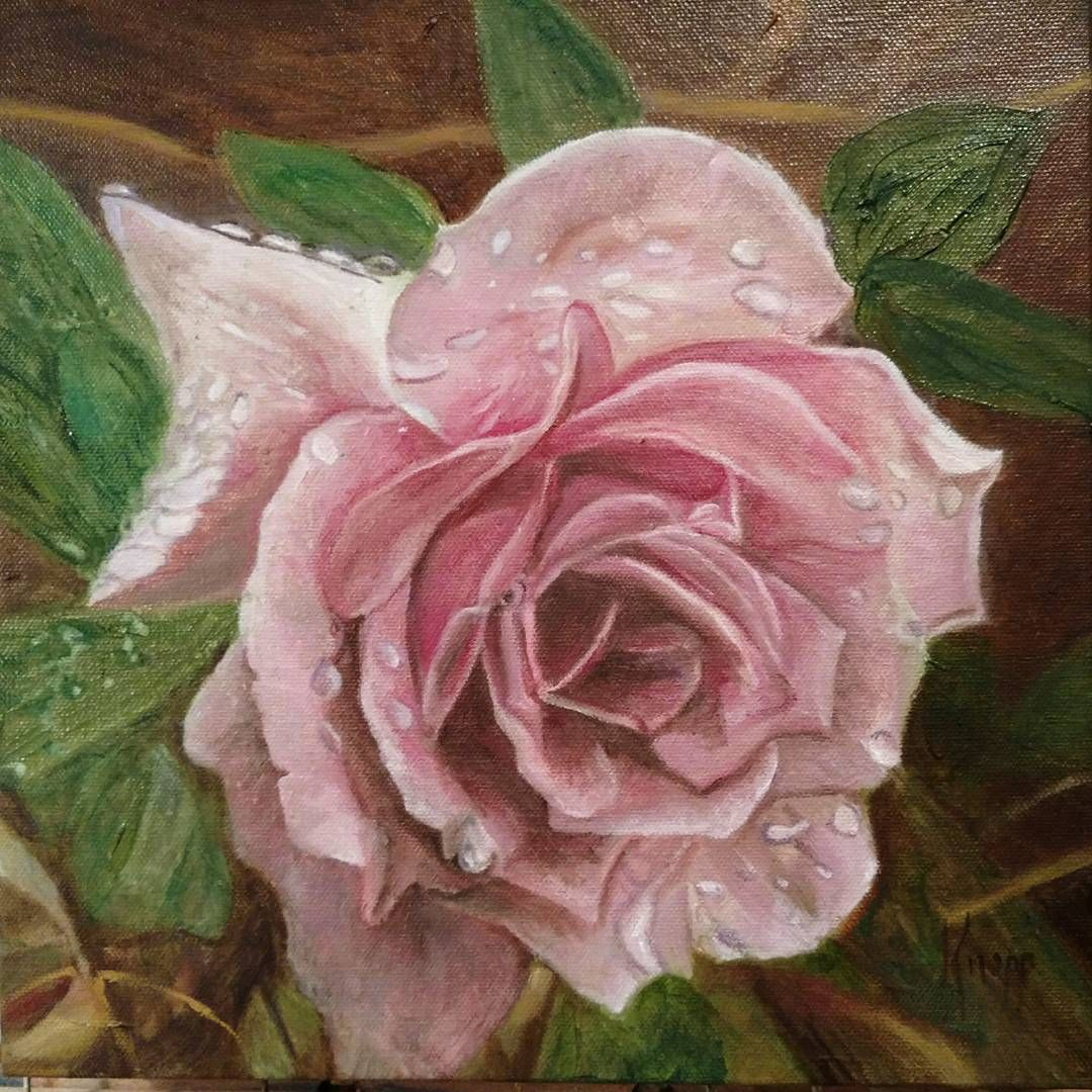 Kathyknopp Rose A Rose Is A Rose Is A Rose Flowers Original Oil Painting Gallery Wrap Petal Magic Oil Painting Gallery Flower Art Original Oil Painting