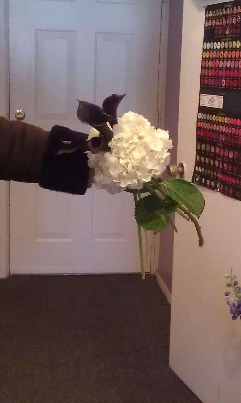 White Hydrangea and Black Calla Lilly for Bridesmaids
