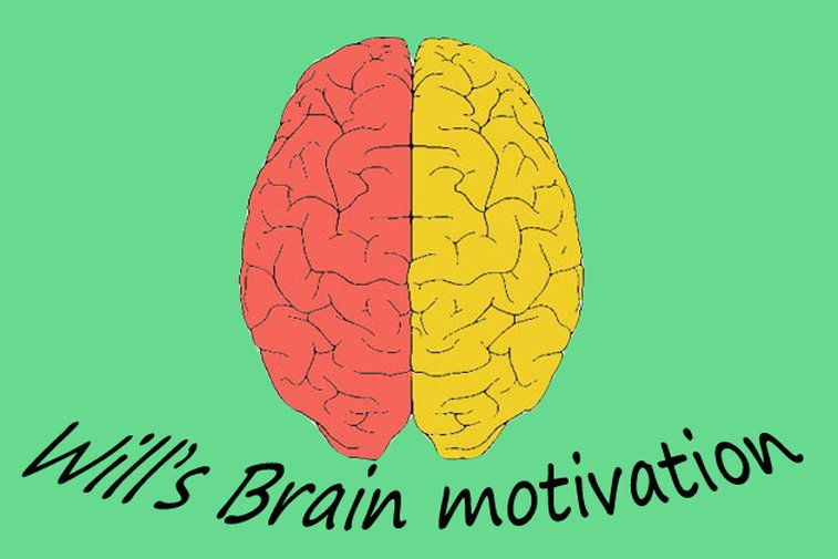willsbrainmotivation