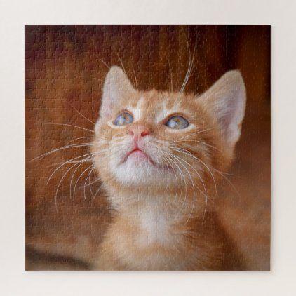 Ginger kitten blue eyes photo cute 20 x 20 jigsaw puzzle | Zazzle.com