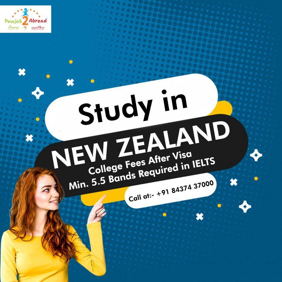 Best visa consultants in 2020 study in new zealand